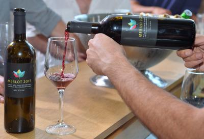 Viticulture at HUJI